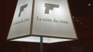 Salon du livre geneve com7